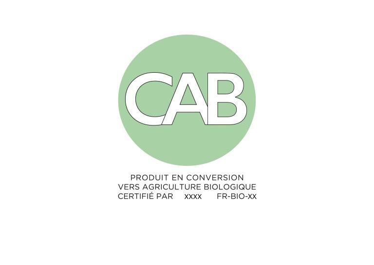 logo CAB HD-versionX